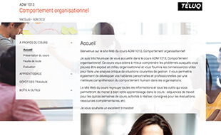 ADM 1013 - Comportement organisationnel