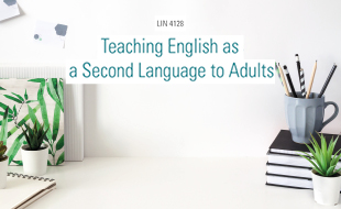 LIN 4128 - Teaching English as a Second Language to Adults